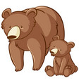 mother and baby grizzly bear cartoon on white vector image