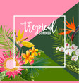 tropical flowers summer banner graphic vector image vector image