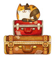 watercolor calico cat on vintage suitcases vector image