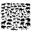 Wildlife Animal Silhouettes vector image vector image