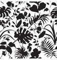 tropic silhouette pattern black vector image
