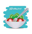 fresh vegetables salad healthy food vector image vector image