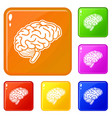 human brain icons set color vector image