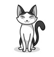 lady cat cartoon character design vector image