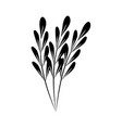 minimalist tattoo branches sketch floral vector image vector image