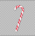 realistic christmas candy cane isolated on vector image