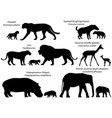 silhouettes of animals of africa with cubs vector image vector image