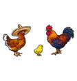 sketch hand drawn chicken set isolated vector image vector image