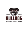 vintage retro glasses bulldog logo icon vector image vector image