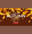 background for autumn season discounts vector image