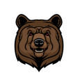 brown bear head animal mascot vector image vector image