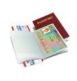 international passport with sweden visa vector image vector image