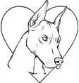 draw in black and white head dog with heart vector image vector image