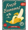 Fresh bananas Banana vector image