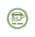 green black herbal tea plant vector image