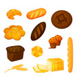 set of different kinds of bread cartoon vector image vector image