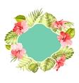 Tropical flower frame vector image