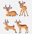 cartoon impala collection set vector image vector image