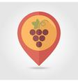 Grapes flat pin map icon Fruit vector image
