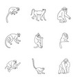 monkey icon set outline style vector image