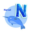 narval is for n letter cartoon children alphabet vector image vector image