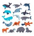 sea mammal water animal character dolphin vector image