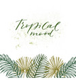 tropical plants exotic vector image vector image