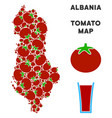 albania map composition of tomato vector image vector image