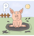 alphabet letter p and pig abc book vector image