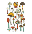 art mushrooms set sketch for your design vector image