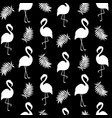 beautiful seamless pattern with black flamingo vector image vector image