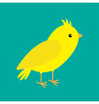 Canary bird Yellow feather Green background Flat vector image