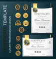 creative certificate template with luxury and vector image