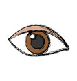 eye icon image vector image