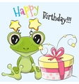 Frog with gift vector image vector image