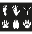 Human foot print and animal footprint vector image