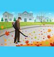man clean up leaves during fall season using a vector image