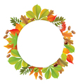 Round autumn banner vector image vector image