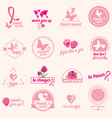 Breast cancer set of stickers Pink ribbon icon vector image vector image