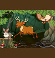 forest scene with wild animals vector image vector image