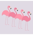 Four pink flamingo set Exotic tropical bird Zoo vector image vector image
