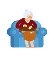 grandmother and turtle pet sitting on chair vector image