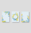 invitation cards with herbal twig branches vector image