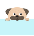 Pug dog mops and paw Cute cartoon character Flat vector image