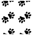 Seamless paw zoo pattern for pet vector image vector image