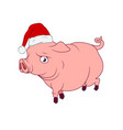 a pig with a santas hat on as a symbol of the vector image vector image