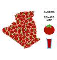 algeria map composition of tomato vector image vector image