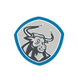 Angry Texas Longhorn Bull Shield vector image vector image