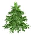 Green pine tree vector image vector image