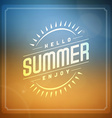 Retro summer design elements vector image vector image